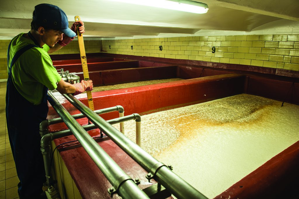 Otwarta fermentacja piwa